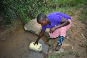The Water Project: Mukhungula Community, Mulongo Spring -  Nelly Submerges Her Container To Fetch Water