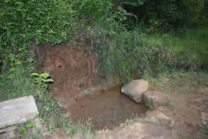 The Water Project: Mukhungula Community, Mulongo Spring -  Water Source