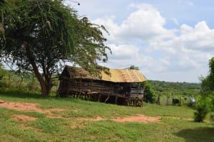 The Water Project: Kaketi Community C -  Animal Pen