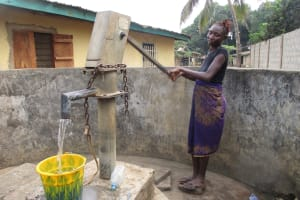 The Water Project: Lungi, Rotifunk, 22 Kasongha Road -  Community Member Collecting Water