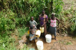 The Water Project: Khaunga A Community, Murutu Spring -  Collecting Water From Murutu Spring