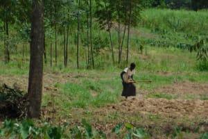 The Water Project: Khaunga A Community, Murutu Spring -  Farming The Major Activity