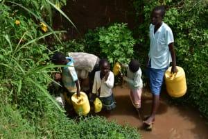 The Water Project: Mukhuyu Community, Namukuru Spring -  Collecting Water From Namukuru Spring