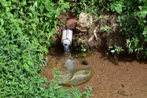 The Water Project: Mukhuyu Community, Namukuru Spring -  Current Sitution Of Namukuru Spring