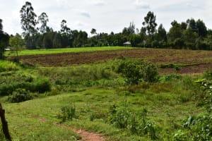 The Water Project: Mukhuyu Community, Namukuru Spring -  Landscape Around Nmukuru Spring