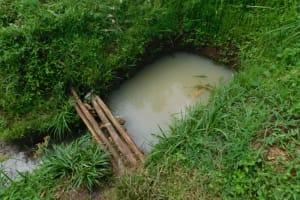 The Water Project: Musango Community, Wambani Spring -  Current Situation Of Wambani Spring