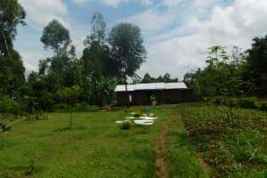 The Water Project: Musango Community, Wambani Spring -  Home Compound