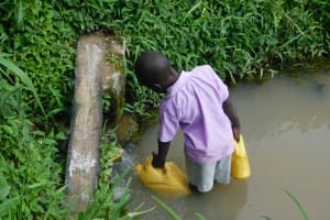 The Water Project: Maraba Community, Nambwaya Spring -  Collecting Water From Nambwaya Spring