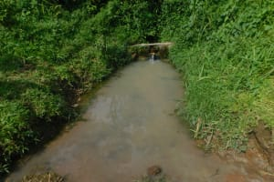 The Water Project: Maraba Community, Nambwaya Spring -  Current Situation Of Nambwaya Spring