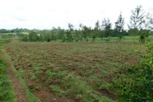 The Water Project: Maraba Community, Nambwaya Spring -  Landscape Around Nambwaya Spring
