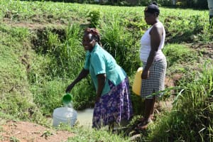 The Water Project: Emusaka Community, Muluinga Spring -  Collecting Water From Muluinga Spring