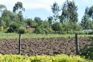 The Water Project: Emusaka Community, Muluinga Spring -  Farming Is A Major Activity