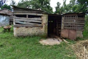 The Water Project: Bukalama Community, Wanzetse Spring -  Animal Pen