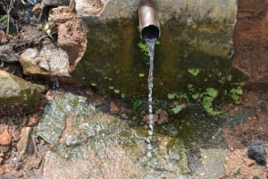 The Water Project: Bukalama Community, Wanzetse Spring -  Current Situation Of Wanzetse Spring