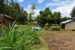 The Water Project: Bukalama Community, Wanzetse Spring -  Home Compound