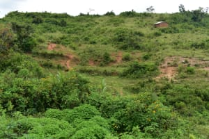 The Water Project: Bukalama Community, Wanzetse Spring -  Landscape Around Wanzetse Spring