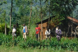 The Water Project: Mabanga Community, Ashuma Spring -  Farming Is The Main Livelihood