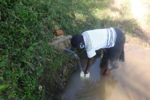 The Water Project: Mahira Community, Mukalama Spring -  Collecting Water