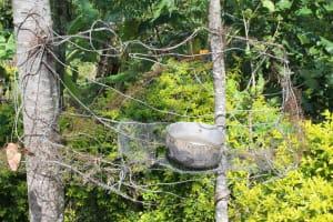 The Water Project: Lukala C Community, Livaha Spring -  Improvised Hanging Dishrack