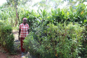 The Water Project: Lukala C Community, Livaha Spring -  Next To Her Bathing Room