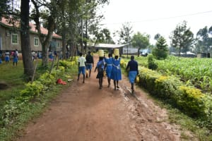 The Water Project: St. Peter's Ebunga'le Primary School -  Students Carrying Water