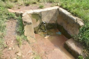 The Water Project: St. Peter's Ebunga'le Primary School -  Water Source