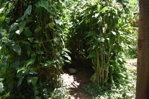 The Water Project: Shianda Township Community, Olingo Spring -  Bathing Shelter