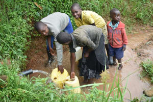 The Water Project: Maraba Community, Shisia Spring -  Collecting Water From Shisia Spring