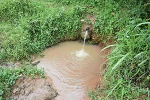 The Water Project: Maraba Community, Shisia Spring -  Current Situation Of Shisia Spring