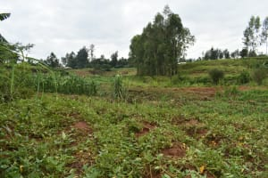 The Water Project: Maraba Community, Shisia Spring -  Landscape Around Shisia Spring