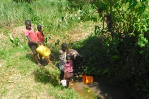 The Water Project: Musango Commnuity, Wabuti Spring -  Collecting Water From Wabuti Spring