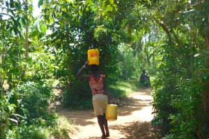 The Water Project: Eshimuli Community, Mbayi Spring -  Taking Water Home From Mbai Spring