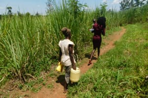 The Water Project: Eshimuli Community, Mbayi Spring -  Taking Water Home From Mbayi Spring