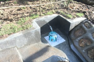 The Water Project: Litinye Community, Shivina Spring -  Water Flowing