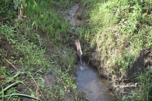 The Water Project: Machemo Community, Boaz Mukulo Spring -  Water Point