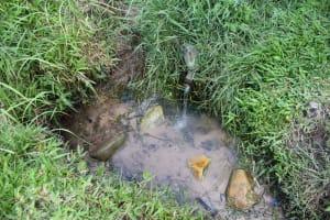 The Water Project: Mukangu Community, Mukasia Spring -  Water Point At Mukasia Spring