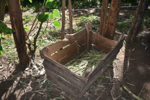 The Water Project: Kimang'eti Community, Kimang'eti Spring -  Animal Feeding Area