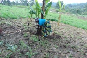 The Water Project: Bukhakunga Community, Wakukha Spring -  Joyna In The Farm