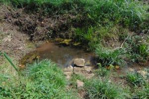 The Water Project: Bukhakunga Community, Wakukha Spring -  Water Source