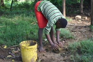The Water Project: Indulusia Community, Wanyama Spring -  Clearing Animal Waste In A Compound