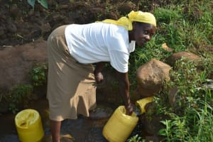The Water Project: Indulusia Community, Wanyama Spring -  Collecting Water