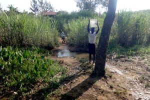 The Water Project: Mahira Community, Mukalama Spring -  Carrying Water