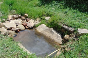 The Water Project: Bukhakunga Community, Maikuva Spring -  Current Water Source