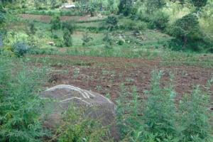 The Water Project: Bukhakunga Community, Maikuva Spring -  Farm