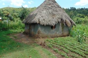 The Water Project: Bukhakunga Community, Maikuva Spring -  Homestead