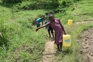 The Water Project: Shamoni Community, Shiundu Spring -  Carrying Water