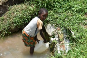 The Water Project: Shamoni Community, Shiundu Spring -  Collecting Water
