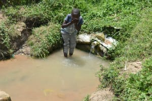 The Water Project: Shamoni Community, Shiundu Spring -  Drinking From The Spring