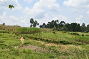 The Water Project: Shamoni Community, Shiundu Spring -  Landscape
