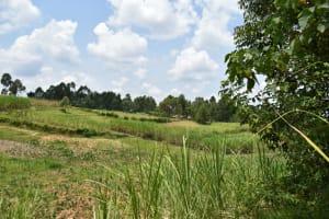 The Water Project: Shamoni Community, Shiundu Spring -  Agrarian Landscape